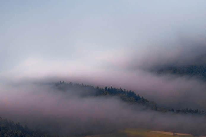 Mgły sprzyjają byciu..