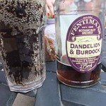 220px-Dandelion_and_burdock