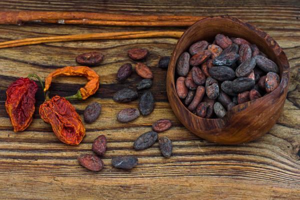ziarna kakaowca