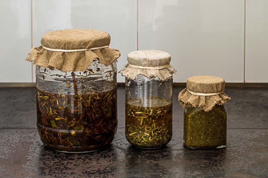 mikstury z kory olchy, czeremchy, bzu czarnego, brzozy