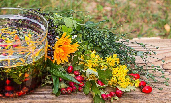 Zioła dla smaku, zdrowia i urody