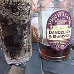 220px-Dandelion_and_burdock