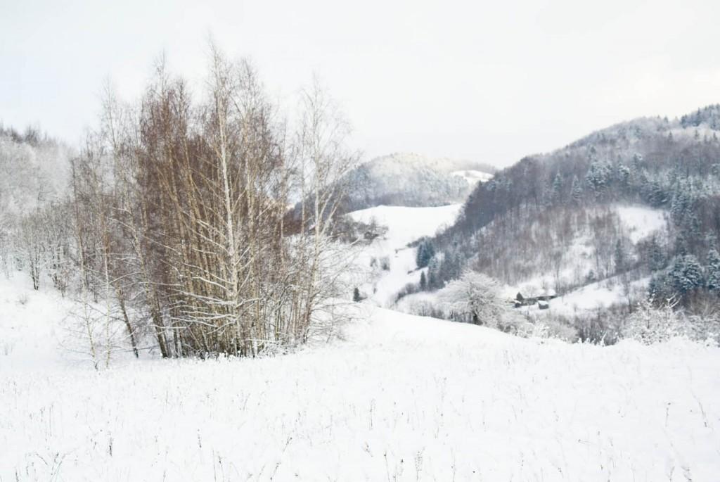 Dwa wzniesienia to Kalatówka i Worecznik, w dolinie nasi sąsiedzi.
