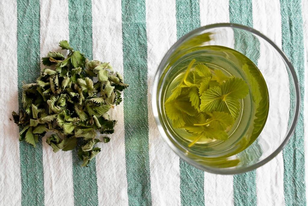 Herbata i susz niefermentowany