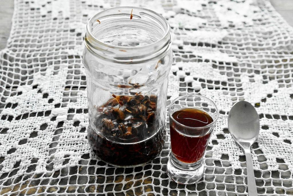 Macerat alkoholowy z kory dębu - alkohol 40% zalewam korę dębu do przykrycia kory.