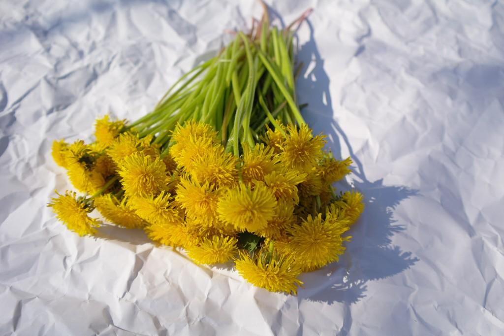 Kwiaty zostawiam na godzinę na białym papierze, to czas dla robaczków, żeby opuściły płatki