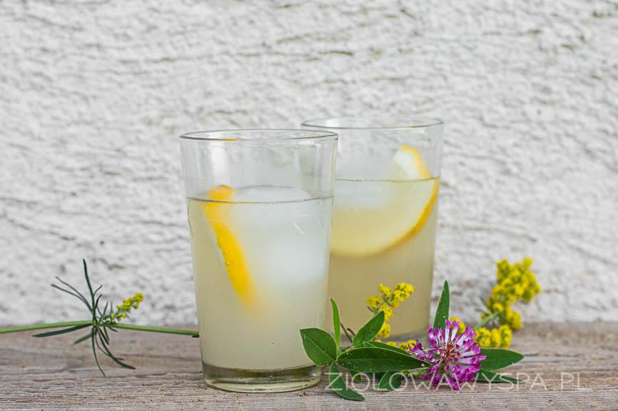 Lemoniady z kwiatów koniczyny i przytulii właściwej.
